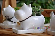 Small clay pots, planters for garden, succulent, cactus, herbs - Schnauzer