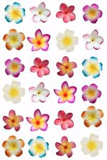 24 x MOANA Frangipani Flowers EDIBLE WAFER RICE PAPER Cupcake Cake Toppers