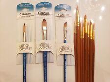 3 New Winsor Newton watercolor  Brush 1/2,1/4 8, 000 +8 Elite 8 6 4 3/0 2/0 $40