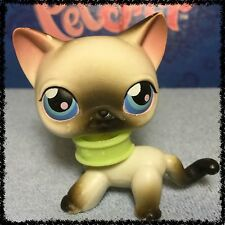 Littlest Pet Shop LPS GREY GRAY AND WHITE SIAMESE CAT # 5 BLEMISHED LOOSE HEAD