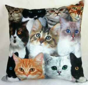 Adorable Cat Kitten Plush Pillow Multiple Faces  12 x 12