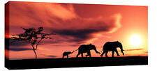 LARGE ELEPHANTS AFRICAN SUNSET MODERN LANDSCAPE CANVAS