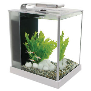 Fluval Spec 10 L - White Desktop Glass Aquarium LED High Output Light