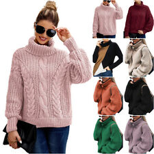 Winter Women Turtle Neck Knitted Sweater Ladies Warm Casual Jumper Pullover Tops