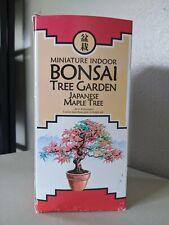 Miniature Indoor Bonsai Tree Garden: Japanese Maple Tree