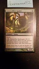 1 x Graverobber Spider - Foil - Born of the Gods - LP - Magic The Gathering -MTG