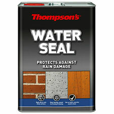 Thompson's Water Seal 5L Waterproof Brick Stone Rain Damage Protection