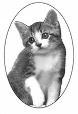 """4""""X6"""" Kitten static cling etched glass window decal"""