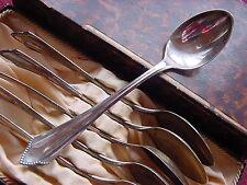 Bsf Friederike 800 plata 6 cucharilla 13,2 cm
