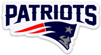 New England Patriots Logo Type Magnet:  New England Patriots NFL Football MAGNET
