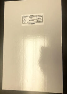 Polyester Laser Plate 13 x 19-3/8 double sided 10,000 impressions  80035