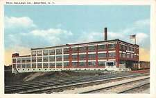 Brocton New York Paul Delany Co Street View Antique Postcard K63980
