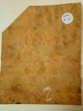 4 CONSECUTIVE SHEETS OF BURR OAK VENEER 18 X 22 cm OAK #15 MARQUETRY