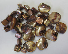 32 Pieces Brown Shell Bead Kit Chunky & Cube Beads For Jewellery Making TAR253