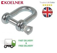 50x Galvanised 12mm Dee Shackles With Screw Collar Pin