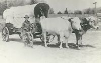 CF-166 MI, Newaygo Palmer Ox Farm and Covered Wagon Real Photo Postcard RPPC