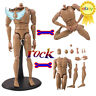 1/6 Scale Male/Man Figure V8 Joint Movement Body Model F 12'' Action Figure Toys