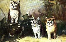 BA24.Vintage Tucks Postcard. Pretty Pussies. Kittens.