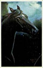 BULGARIA 1916 HORSE WITH WW I CENSOR ON PPC FROM SOPHIA W/ 1v