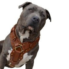 "Dog Harness - Leather ""Attila"" Collection"