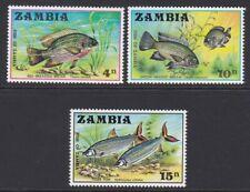 Zambia MINT 1971 Bream & Tigerfish complete set sg165-167 MNH