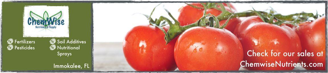 chemwisenutrients