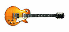 Jimmy Page's 1959 Gibson Les Paul #1 guitar Greeting Card, DL size