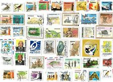 ZIMBABWE - Selection of Stamps on Paper from Kiloware