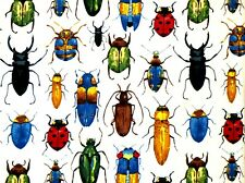 FAT QUARTER FABRIC BUGS  BEETLES  INSECTS  COLORFUL COLEOPTERA  100% COTTON  FQ