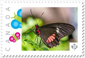 brown BUTTERFLY side view Personalized Postage stamp MNH Canada 2018 p18-06sn20