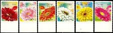 ISRAEL 2013/14 - GERBERA SELF-ADHESIVE DEFINITIVES - FULL SET OF 6 STAMPS - MNH