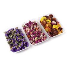 1 Box Real Dry Dried Flowers For DIY Art Epoxy Resin Jewelry Making Craft