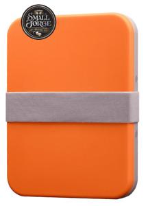 WPP12 Redgrass Everlasting Wet Palette: Painter Starter Pack - Orange, NEW