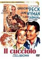 Il Cucciolo - DVD versione restaurata, Cineteca