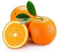 Adhesivo Naranja