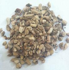 1oz Calamus Root Organic & Kosher Poland (Acorus Calamus)