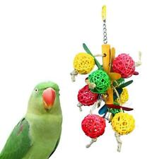 Funny Wood Hanging Chew Bell Ball Cage Playing Pet Parrot Bird Parakeet Toy B