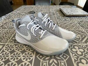 Nike Lebron James Witness Shoes