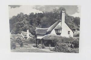 Picture Postcard- Exmoor, Selworthy Green [Blackmore] A186