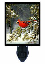 Night Light - Woodland Cardinal - Red Bird - Winter Trees and Snow