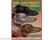 Grey Hounds S.E.P Magazine Cover 1941  Refrigerator / Tool Box  Magnet