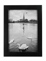 Golden State Art, 8x10 Ebony Black Color Wood Swan Photo Frame with REAL GLASS