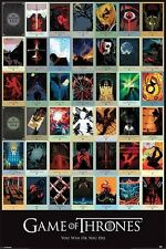 (LAMINATED) GAME OF THRONES EPISODES POSTER (61x91cm) COLLAGE PICTURE PRINT NEW