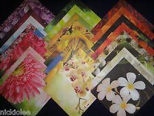 12x12 Scrapbook Paper Garden Colorbok 25 Lot Spring Floral Botanical Flowers Kit