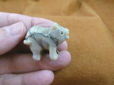 Y-Tas-De-13) little white gray Tasmanian Devil marsupial figurine Soapstone Peru