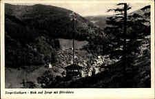 Zorge Niedersachsen 1967 Blick ins Tal Wälder Wetterfahne Dorfansicht Häuser