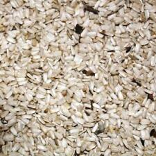 (EUR 2,94/kg) 2,5kg blanc graines de tournesol Nourriture pour Oiseau PERROQUET