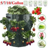 Plant Grow Bag Vegetable Garden Garden Planting Strawberry Planter Bags 3/5/10Pc