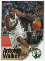 "1996/97 NBA HOOPS ANTOINE WALKER ""ROOKIE"" RC #312 BOSTON CELTICS"