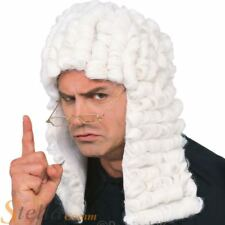 Adult Deluxe White Judge Curly Wig Lawyer Barrister Fancy Dress Accessory